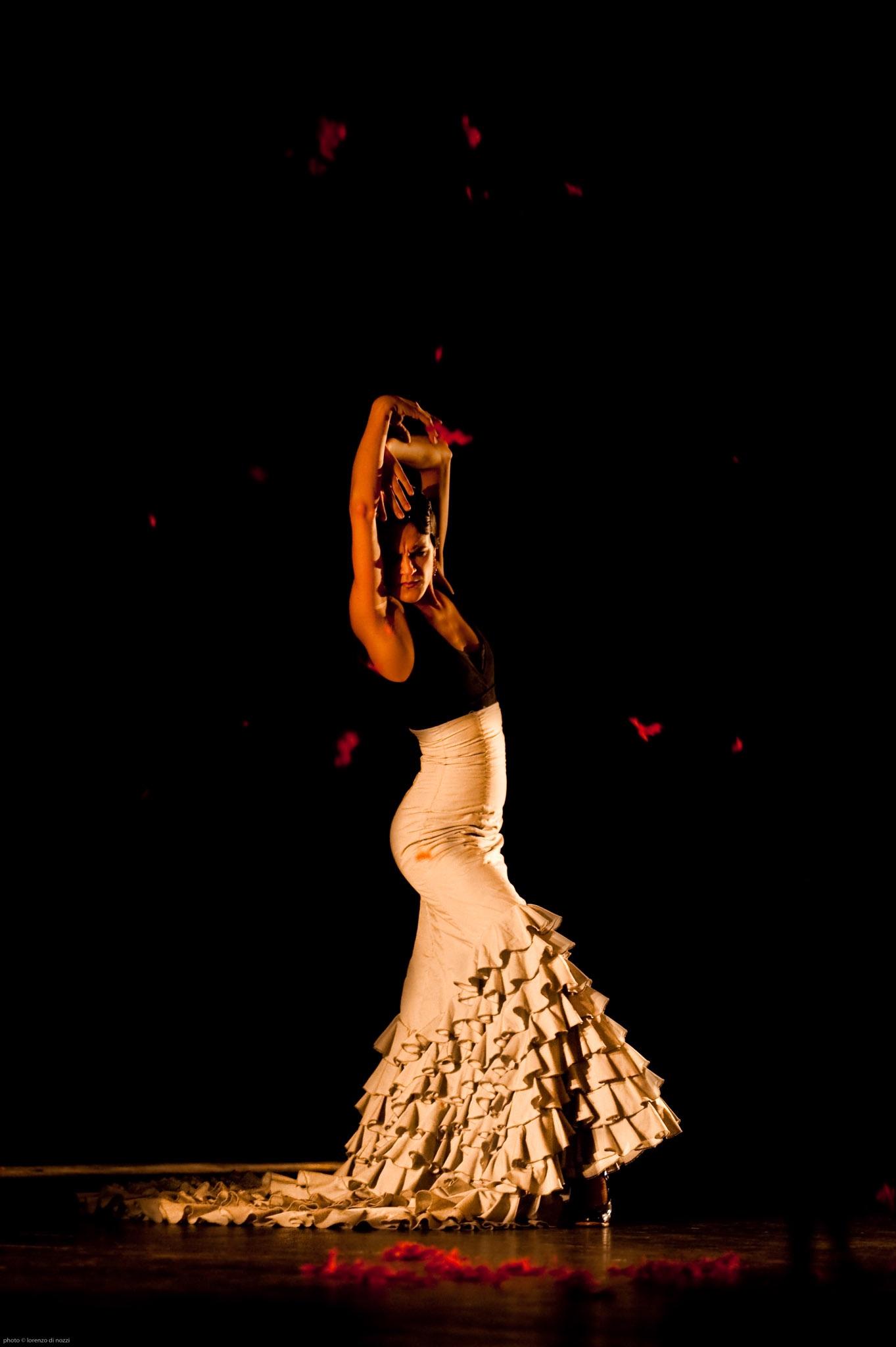 091120_flamenco_040
